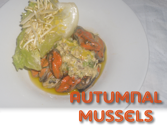 Autumnal_Mussels