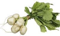 CSA-Tokyo-Turnips